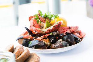 shellfish 1