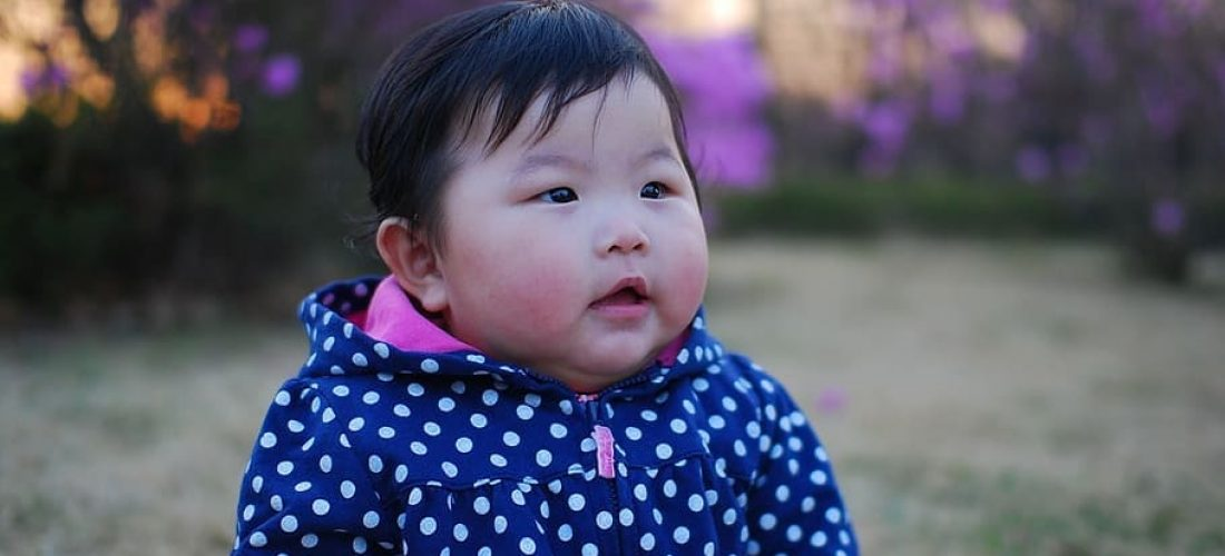 obesity in children - obese baby